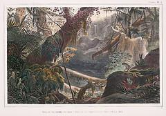 Brazil năm 1822