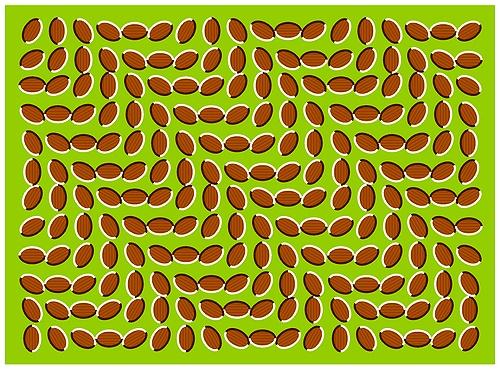 Hình chuyển động mà không phải hình động